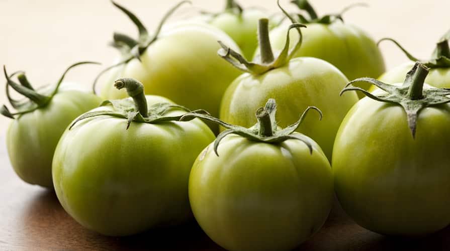 Pomodori verdi al cane