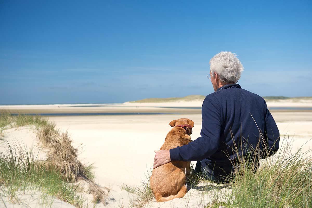 Affrontare la morte del cane